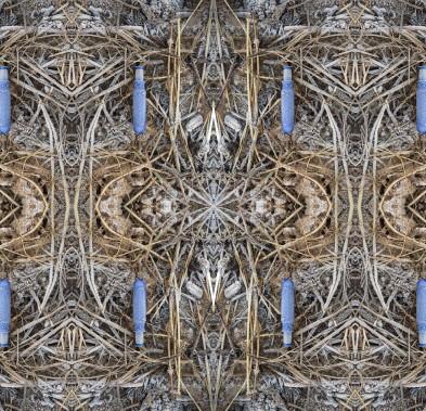 beach tampax pattern